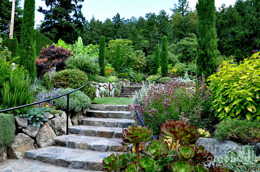 So you want to have a trendy garden smooth decorator for Trendy garden designs