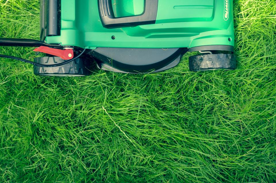 Following lawn care tips and mowing regularly